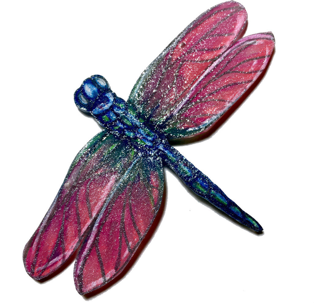 Pink wings blue body dragonfly